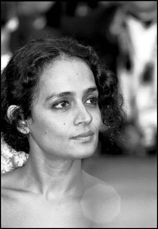 "Transcript of Arundhati Roy's ""seditious"" speech « New Red Indian"